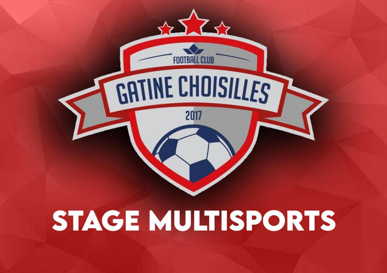 ⚽ Stage multisports